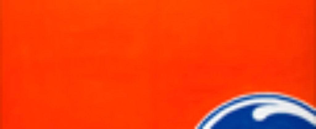 120x120px-Orange-AcrylicOnCanvas-TechnoFood2015-Michele Zanoni